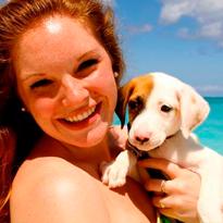 Ilha caribenha está cheia de filhotes e é possível adotá-los
